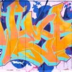 2007 Bronx
