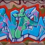 2005 Bronx