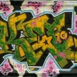 2009 Bronx