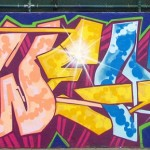2012 Bronx