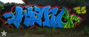 2010 Sweden